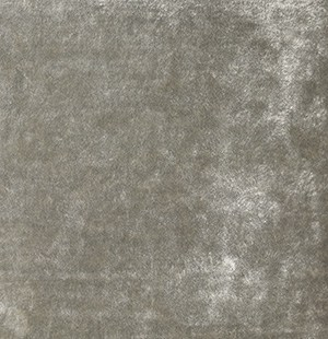 zilverkleurig