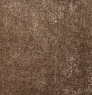 bronskleurig